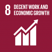 UN Development goal 8: Decent work and economic growth
